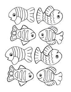 April Week 3 - Fish Activity Page
